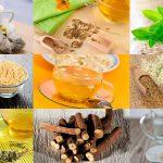 10 plantes pour prendre soin de la digestion
