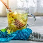 10 plantes contre le rhume et la toux