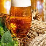 6 propriétés saines de la bière