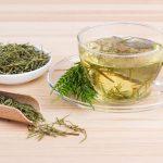 Prêle, plante médicinale à effet diurétique