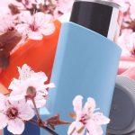 6 plantes pour les allergies printanières