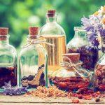 10 plantes médicinales essentielles dans votre maison