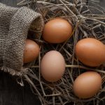 5 raisons d'avoir des œufs au petit déjeuner